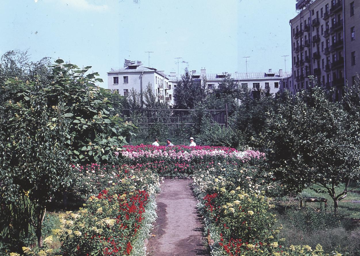 Рукотворное чудо в центре Москвы